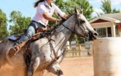 barrel-racing-horse
